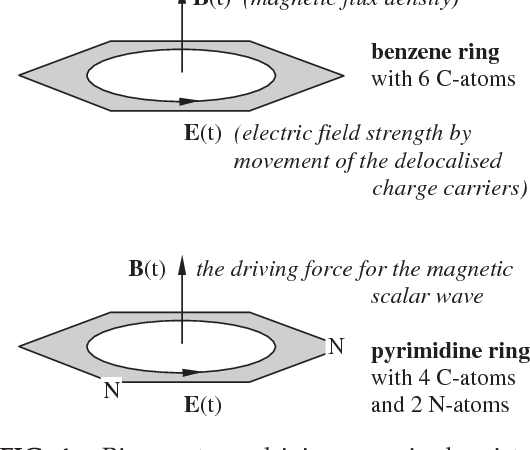 PDF] DNA and cell resonance: magnetic waves enable cell