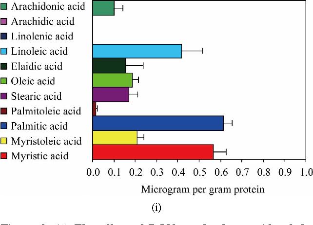 Figure 8 from Regulatory Role of Free Fatty Acids (FFAs