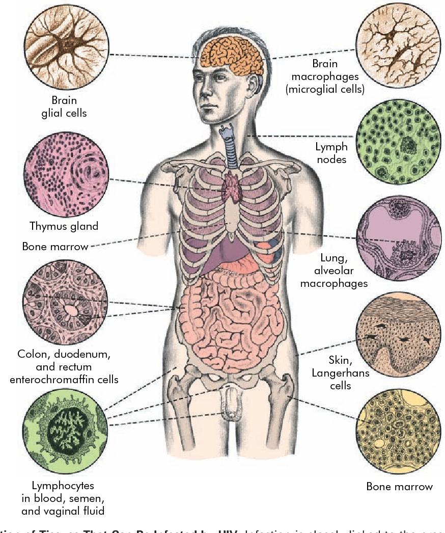 figure 7-24