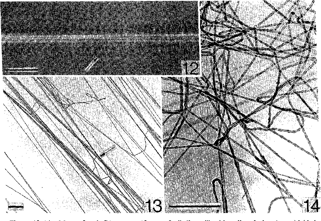figure 12—14