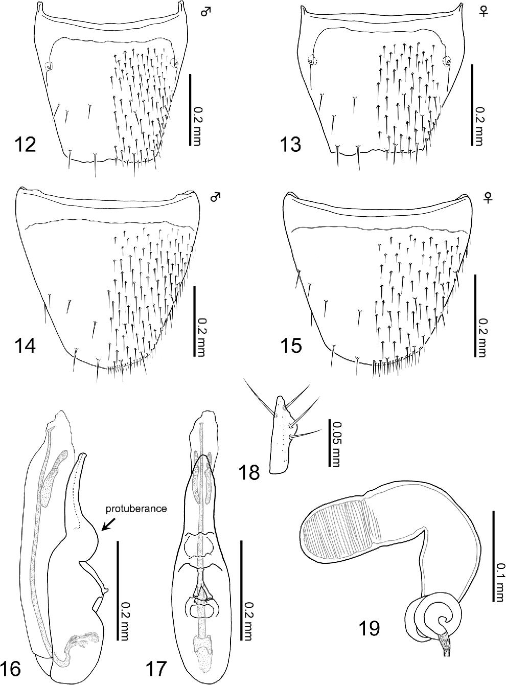 figure 12–19