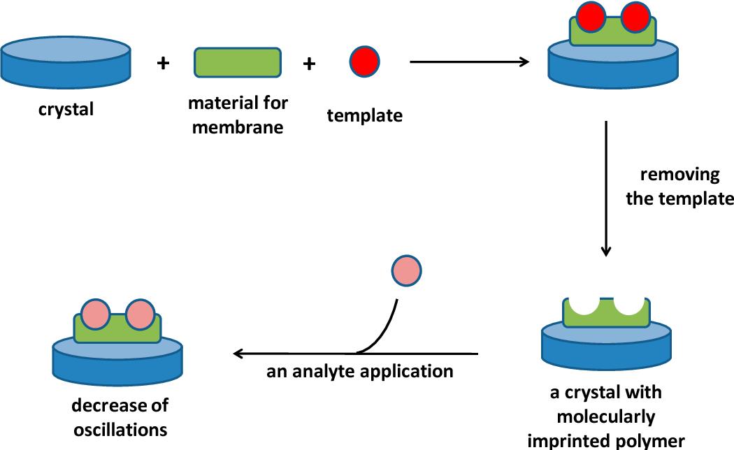PDF] Overview of Piezoelectric Biosensors, Immunosensors and