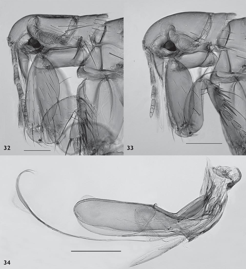 figure 32-34