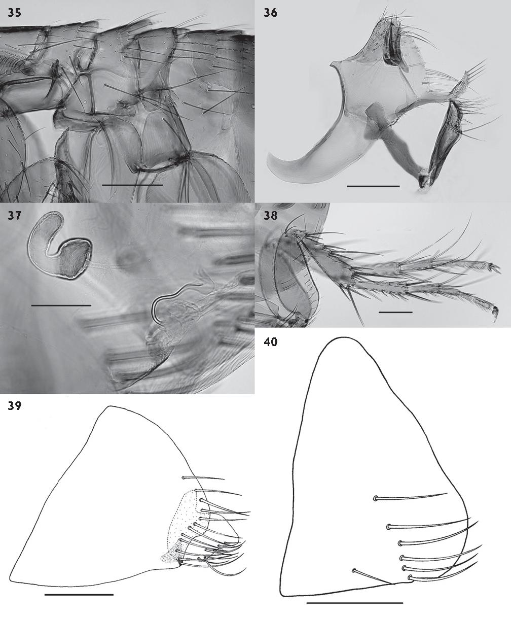 figure 35-40