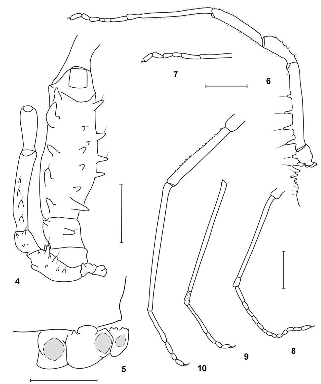 figure 4-10