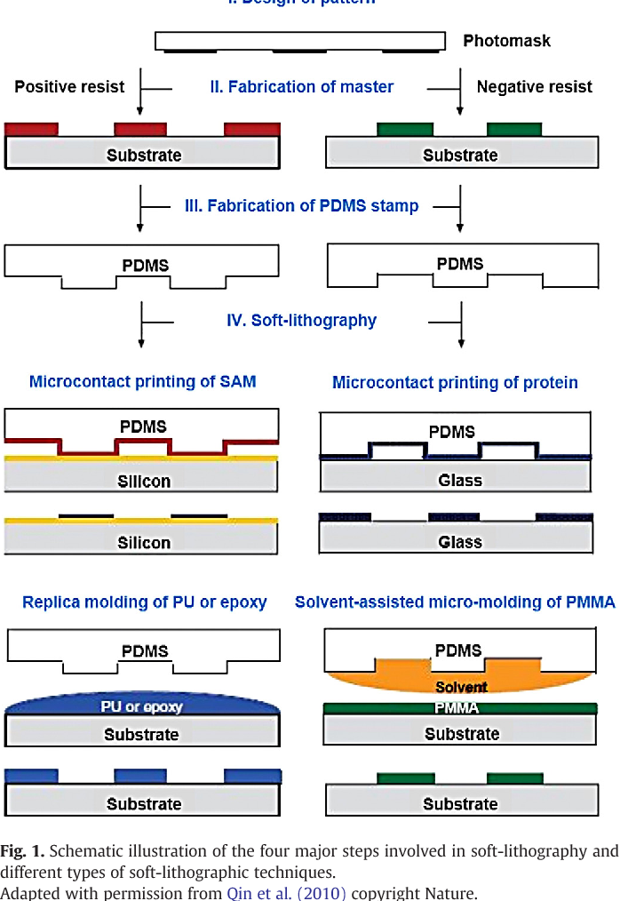 Figure 1 from Bioimprinting strategies: from soft