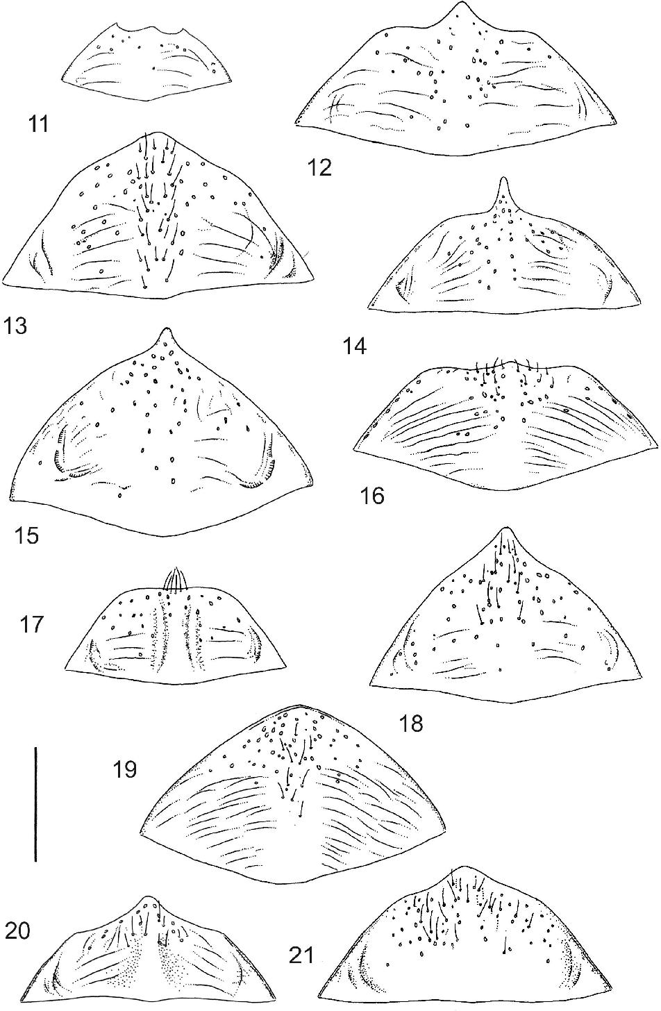 figure 11–21