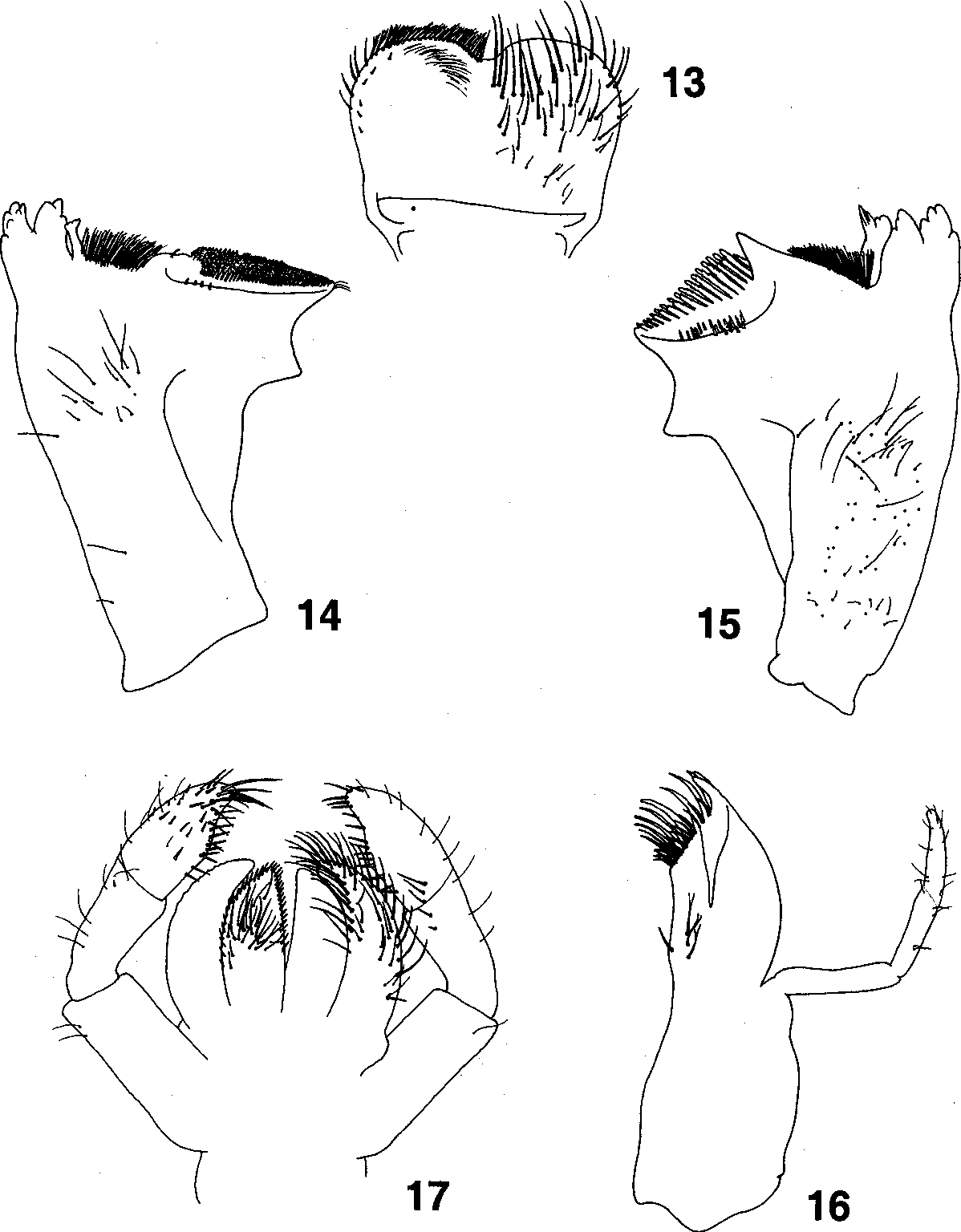 figure 13-17