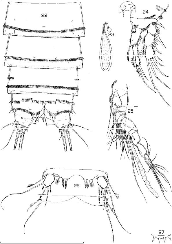 figure 22–27