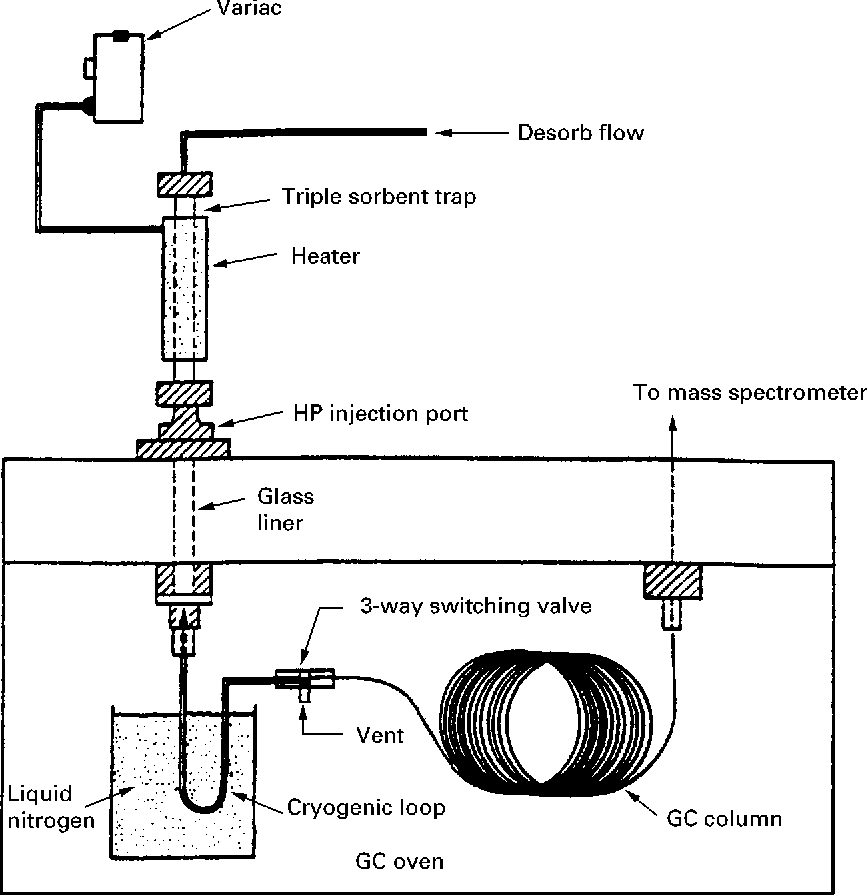 Figure 1 from Gas Chromatography ^ Mass Spectrometry