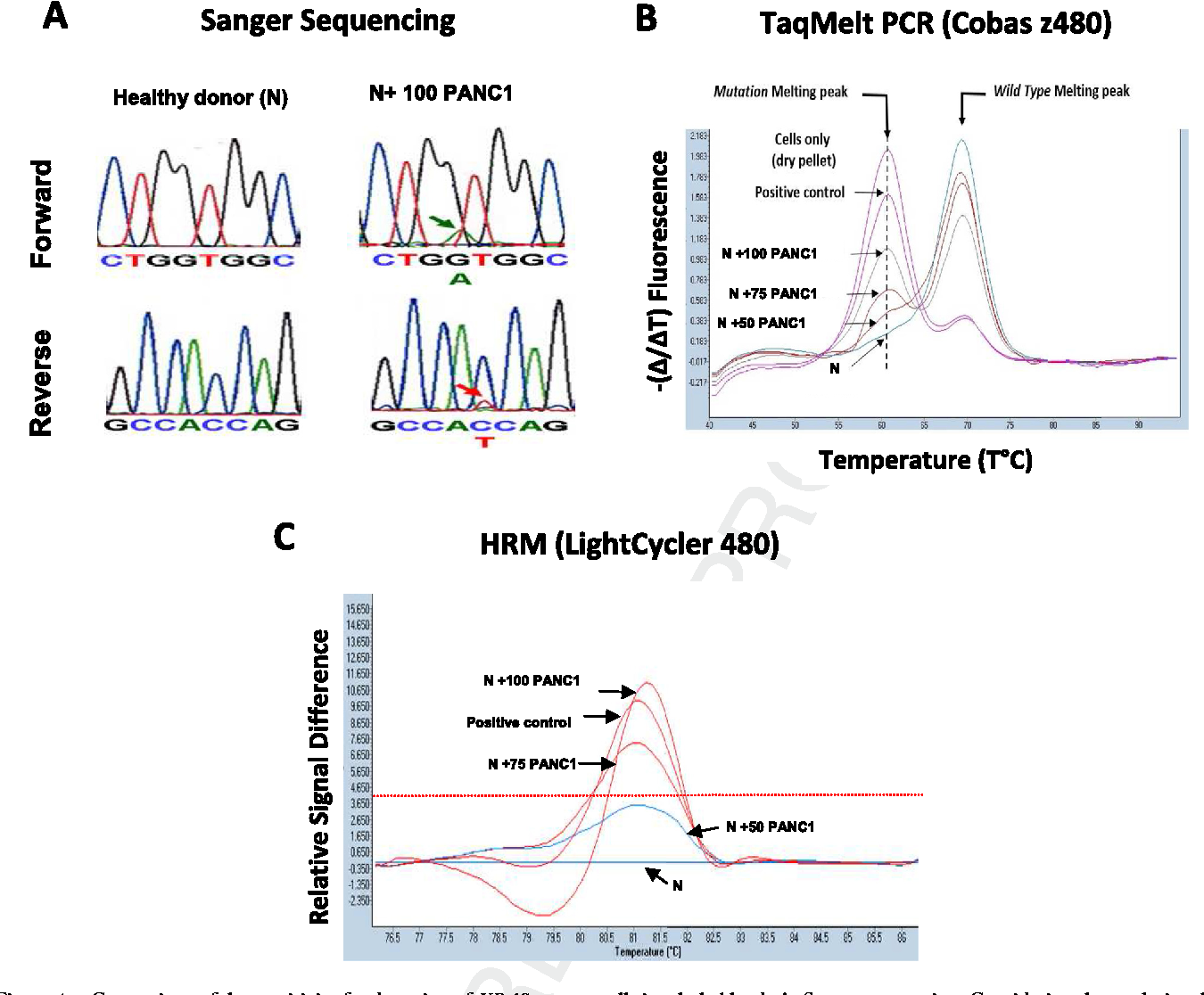 Figure 4 e Comparison of the sensitivity for detection of KRAS mutant cells in whole blood. A. Sanger sequencing. Considering the weak signal, the detection limit is close to 100 cells. As control, no signal was detected in blood from healthy donors or in blood spiked with 50 PANC1 cells. B. TaqMeltPCR: The presence of a mutation melting peak at the correct annealing temperature indicate the presence of KRAS mutations. The