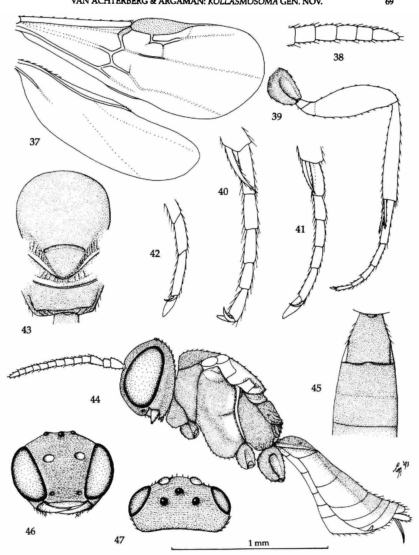 figure 37-47