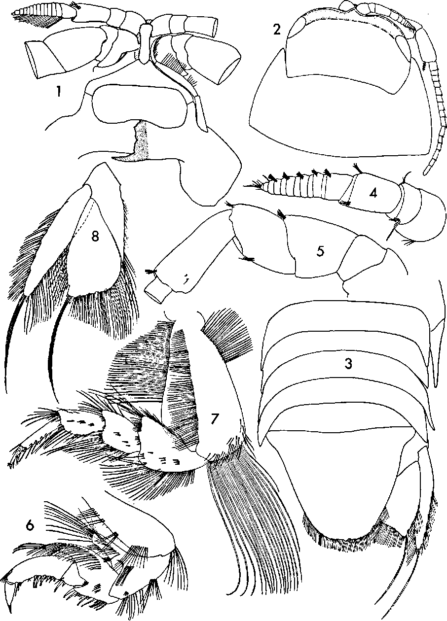 figure 1—8