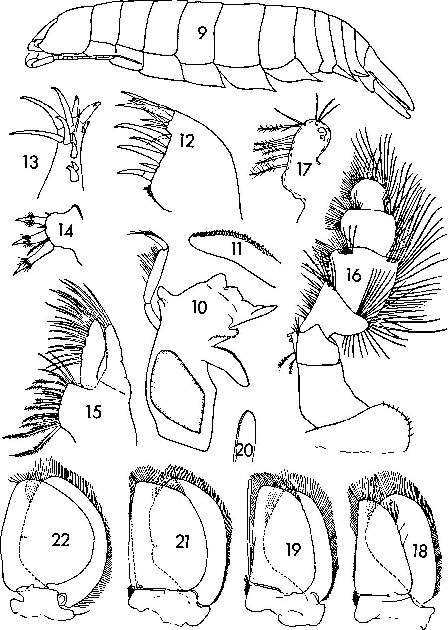 figure 9—22