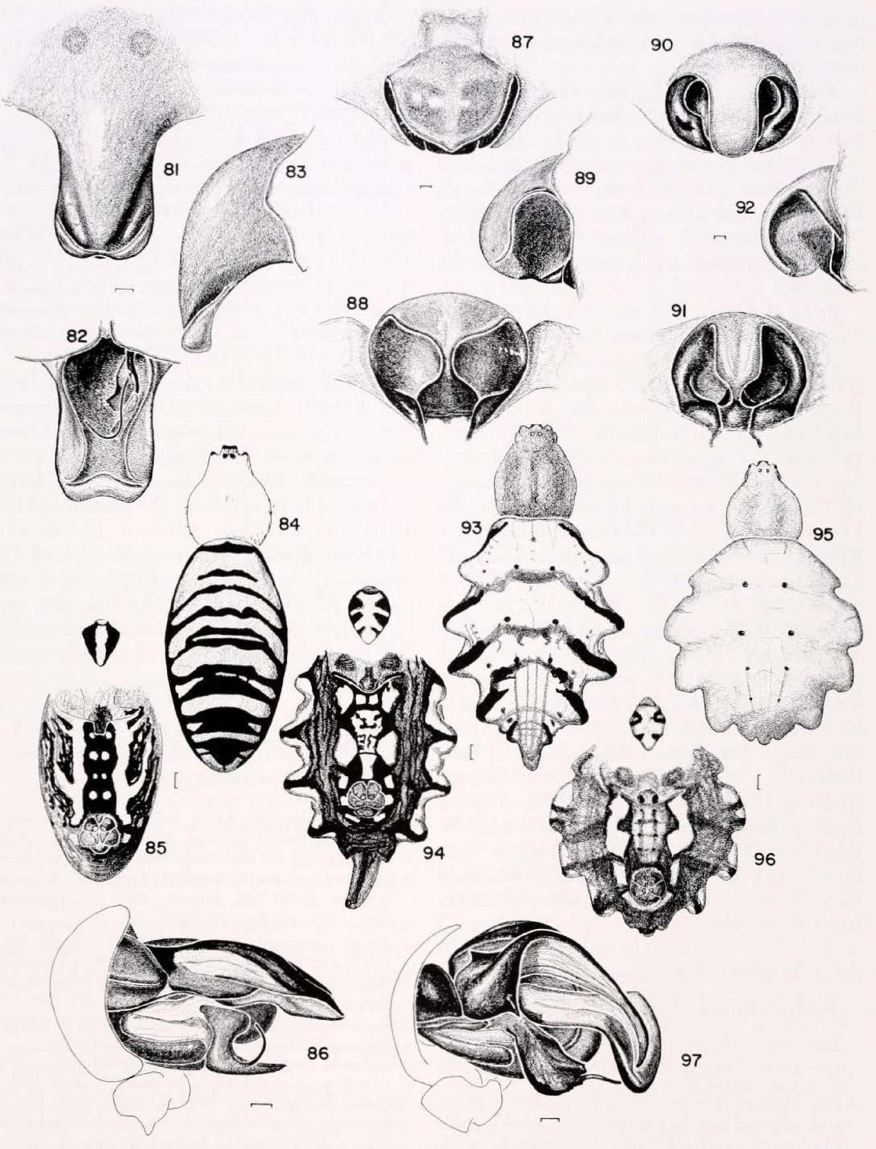 figure 81-86