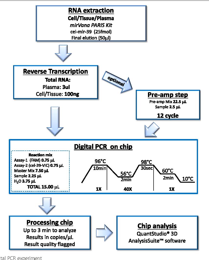 Novel Method To Detect Micrornas Using Chip Based Quantstudio 3d Digital Pcr Semantic Scholar