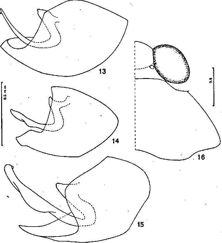 figure 13—15