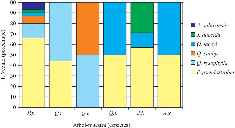 Pdf Análisis De La Estructura Horizontal Y Vertical En Un