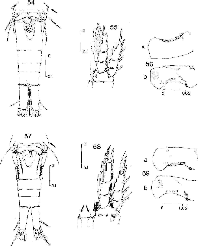 figure 54-59