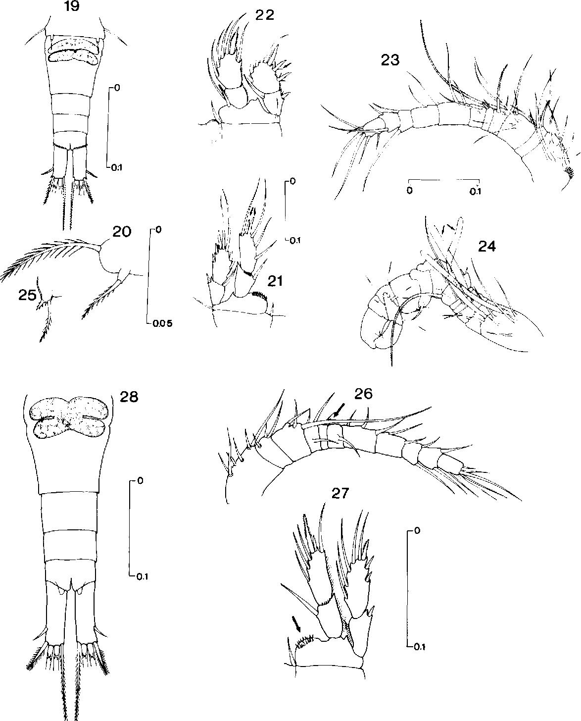 figure 19-28