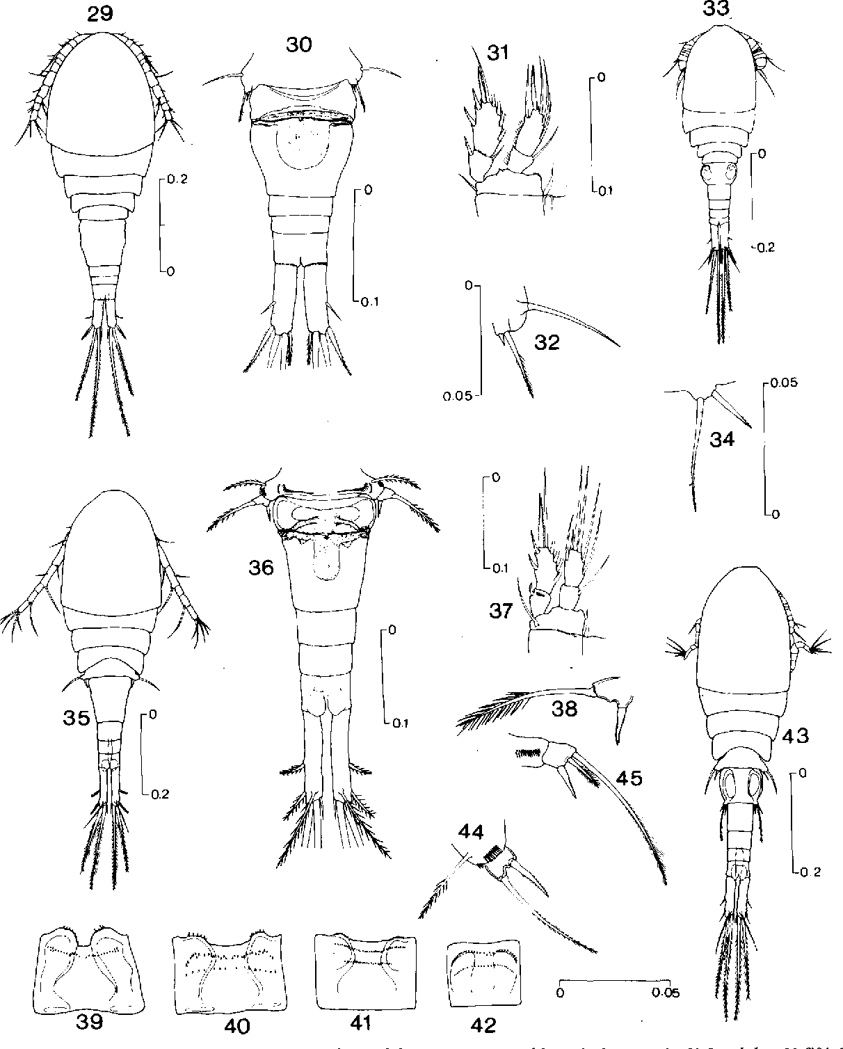 figure 29-45