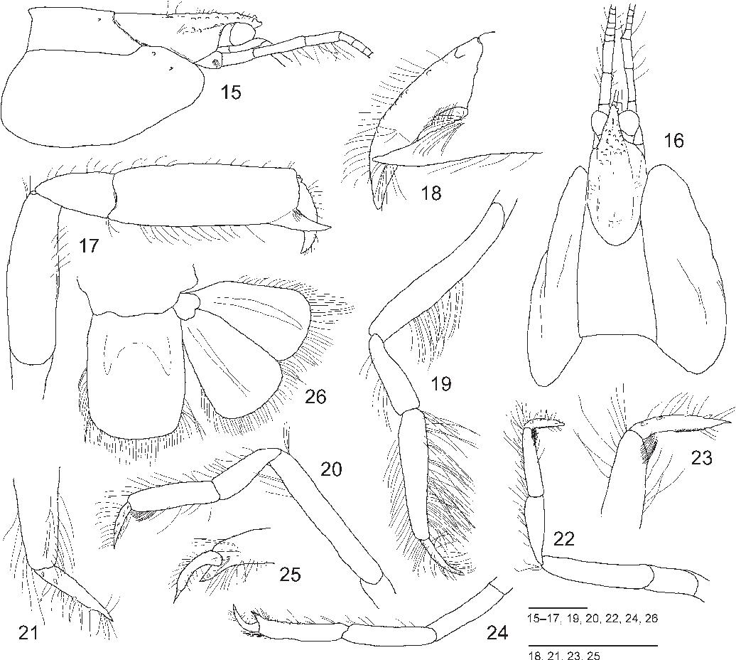 figure 15–26