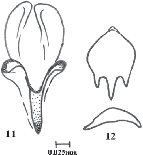 figure 11–12
