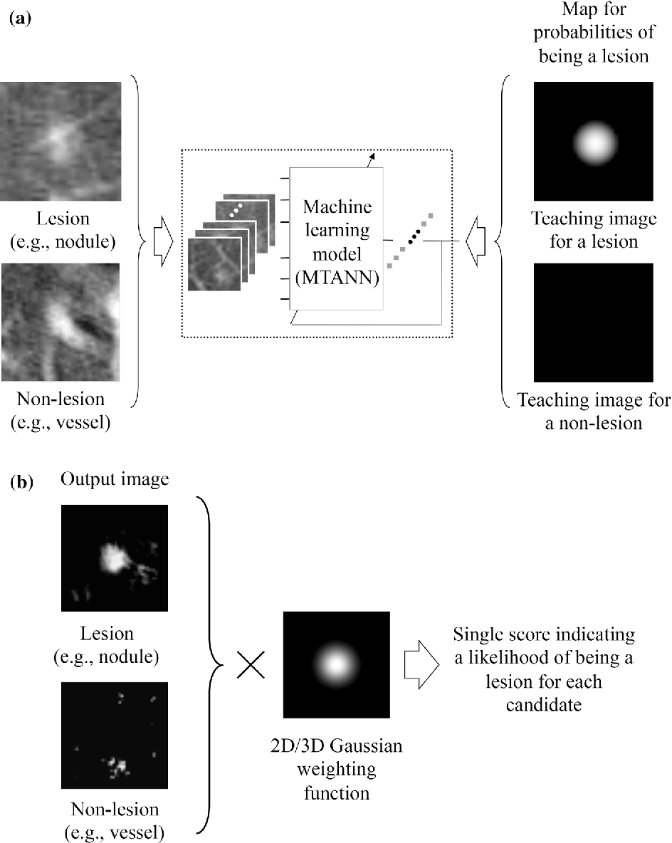 Overview of deep learning in medical imaging - Semantic Scholar