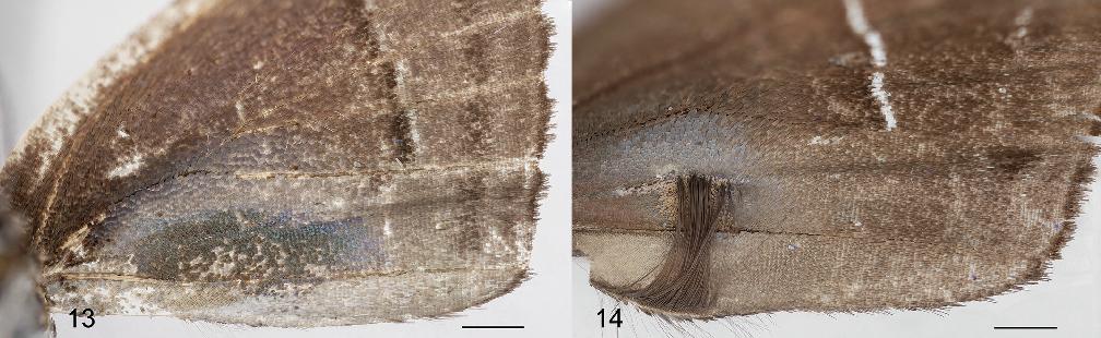 figure 13–14