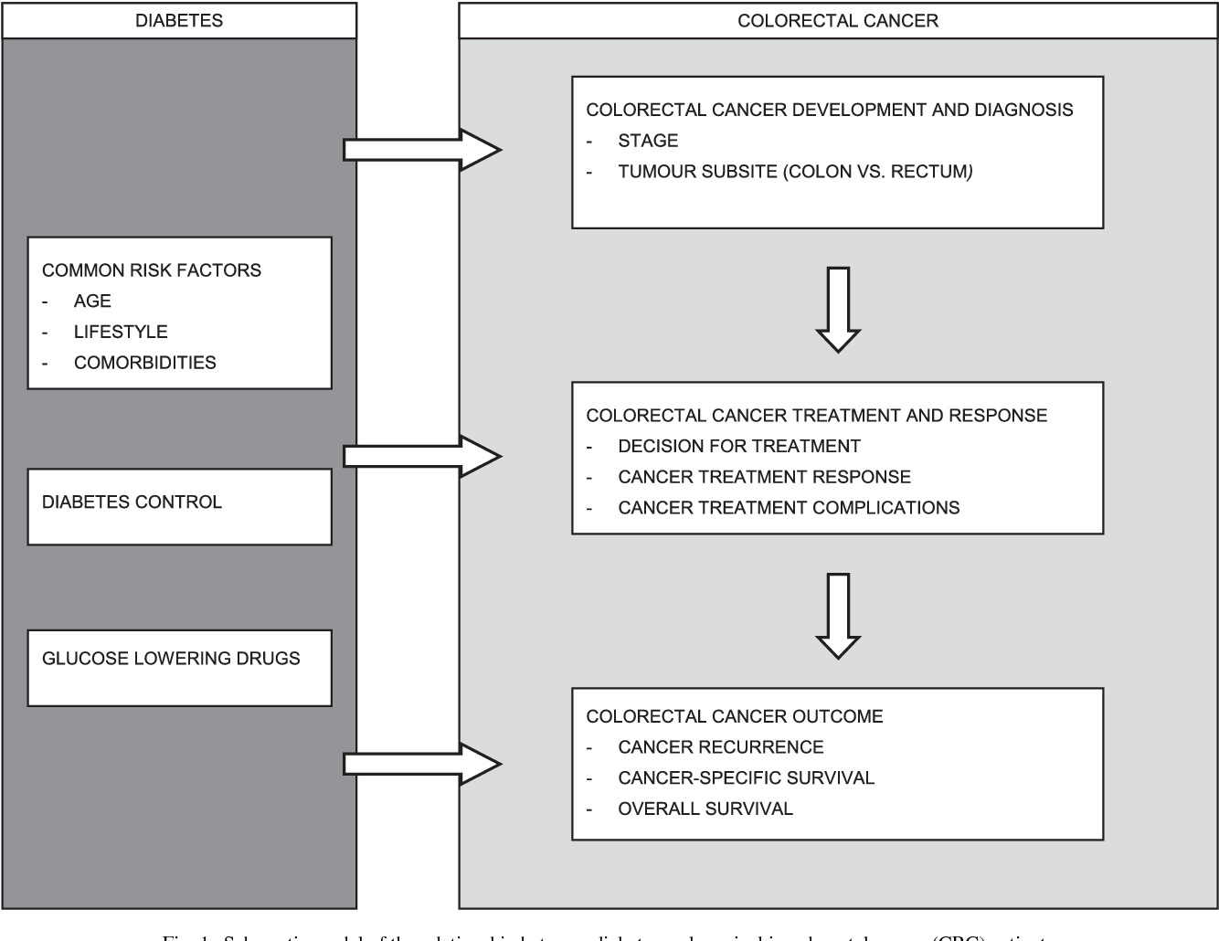 Figure 1 From Colorectal Cancer Diabetes And Survival Epidemiological Insights Semantic Scholar