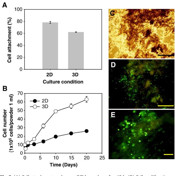Figure 3 from Human extracellular matrix (ECM) powders for
