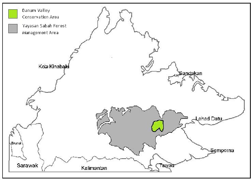 Figure 1 From Patterns Of Abundance And Diversity In Epiphytic Orchids On Parashorea Malaanonan Trees In Danum Valley Sabah Semantic Scholar