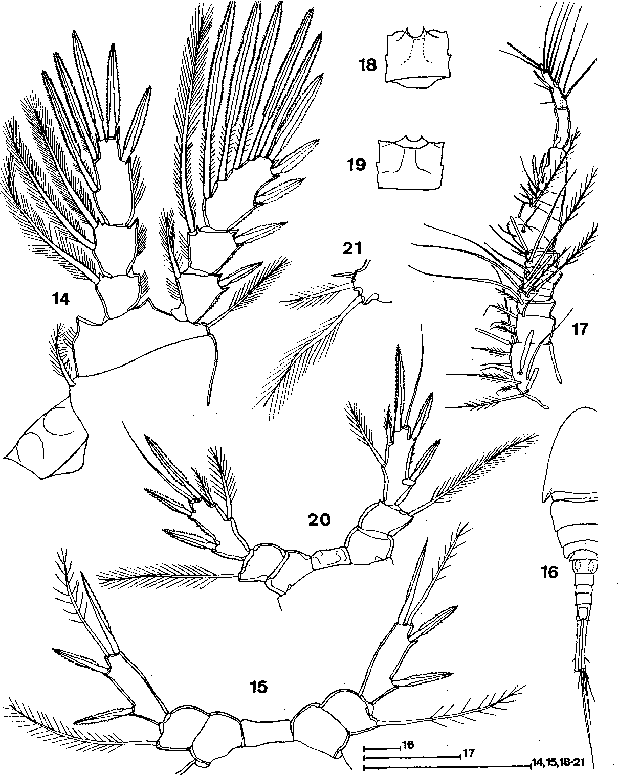 figure 14-21