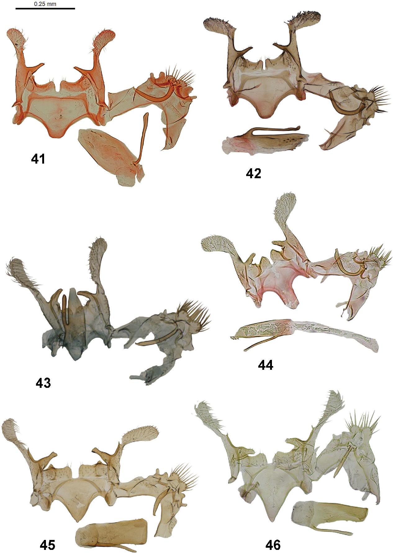 figure 41–46