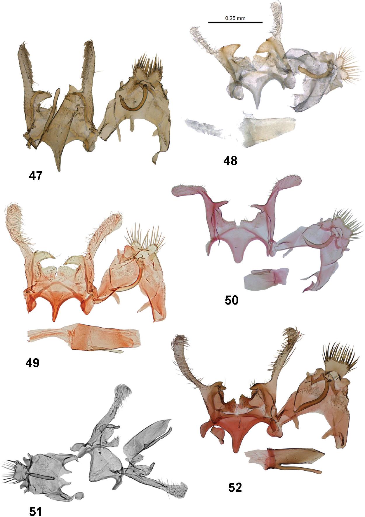 figure 47–52