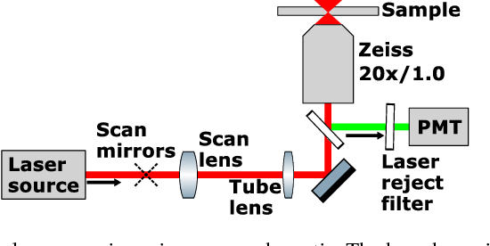 Figure 3 from Compact diode laser source for multiphoton