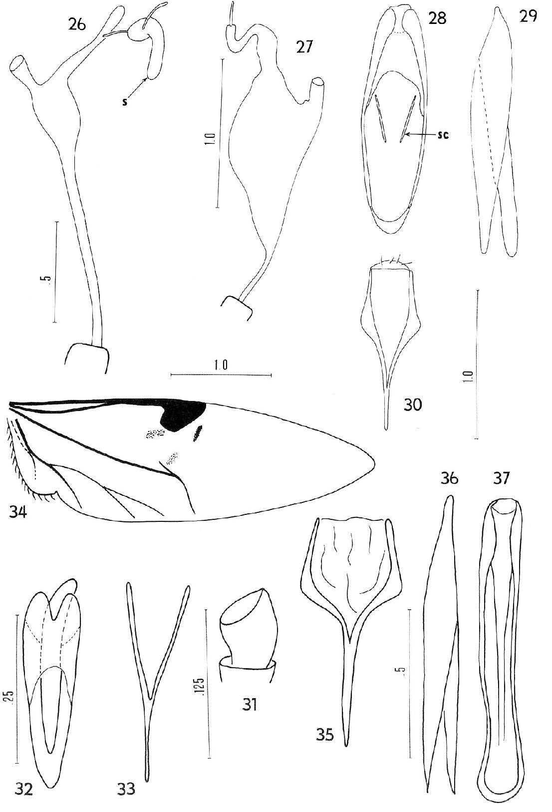 figure 26-37