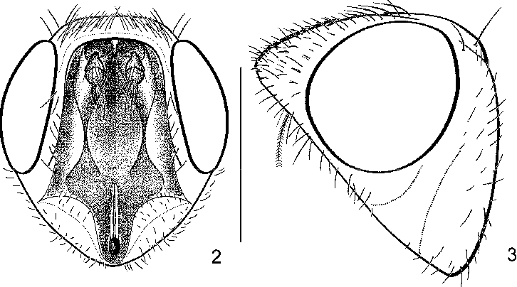 figure 2—3