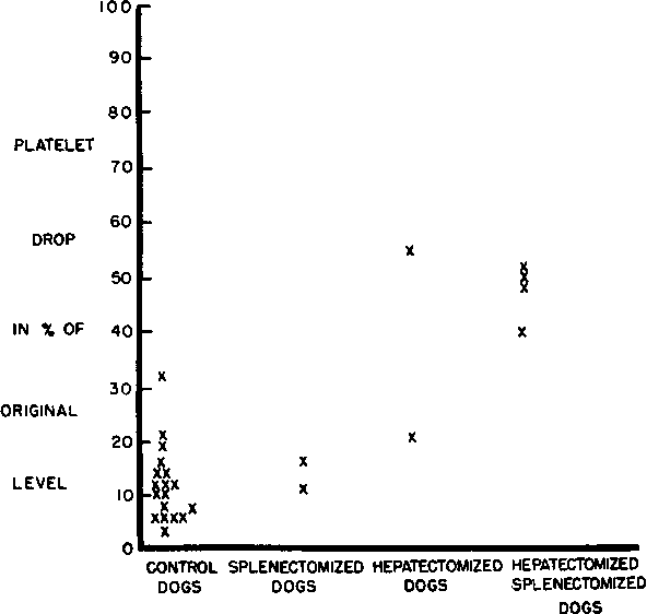 Leukopenia And Thrombocytopenia In Dogs