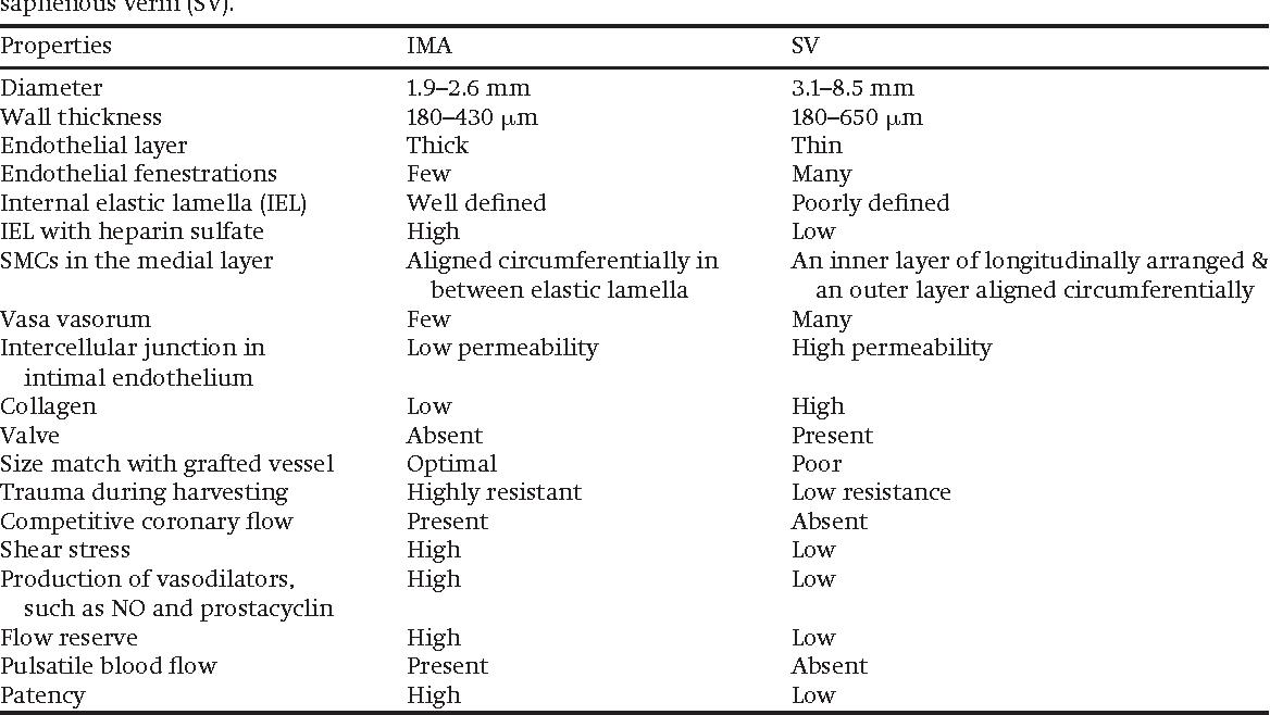 definition of coronary artery bypass graft