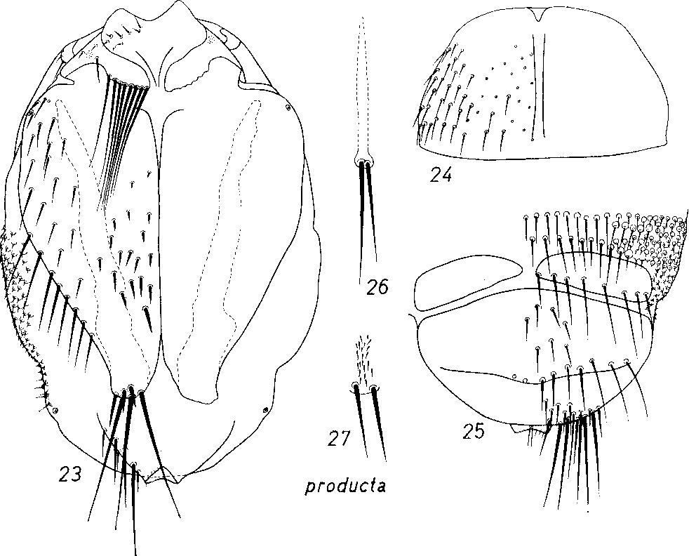figure 23-27