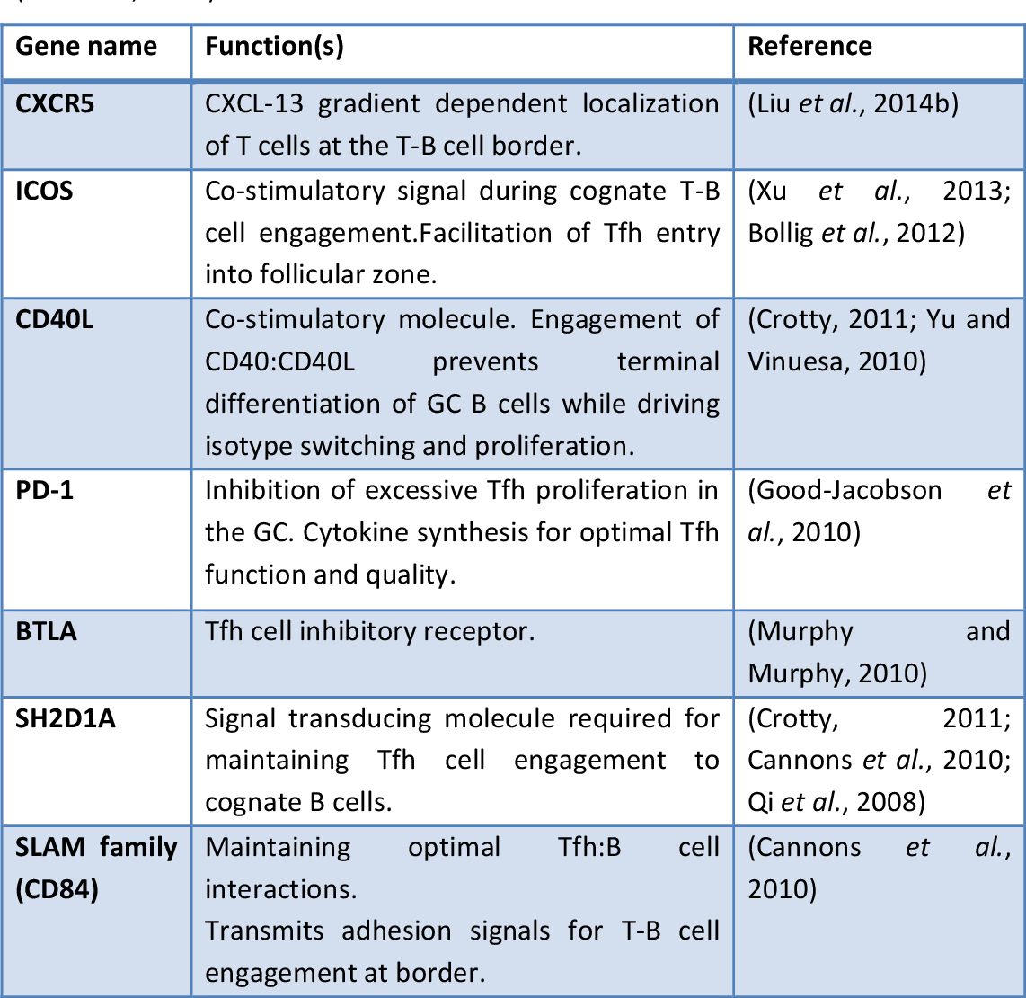 table 1.1