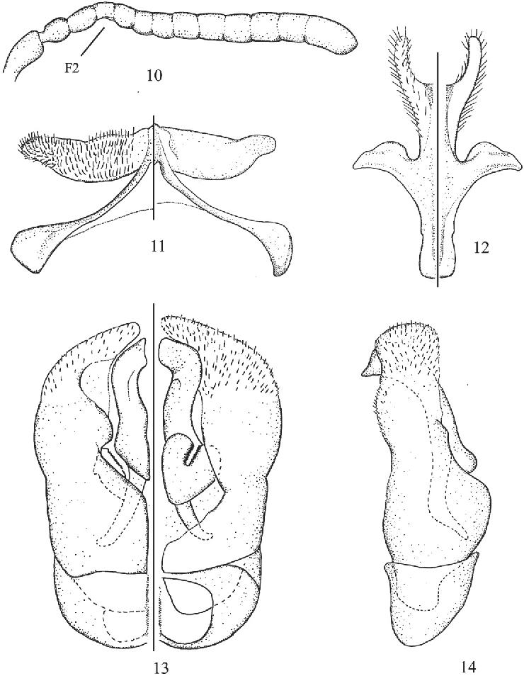 figure 10–14