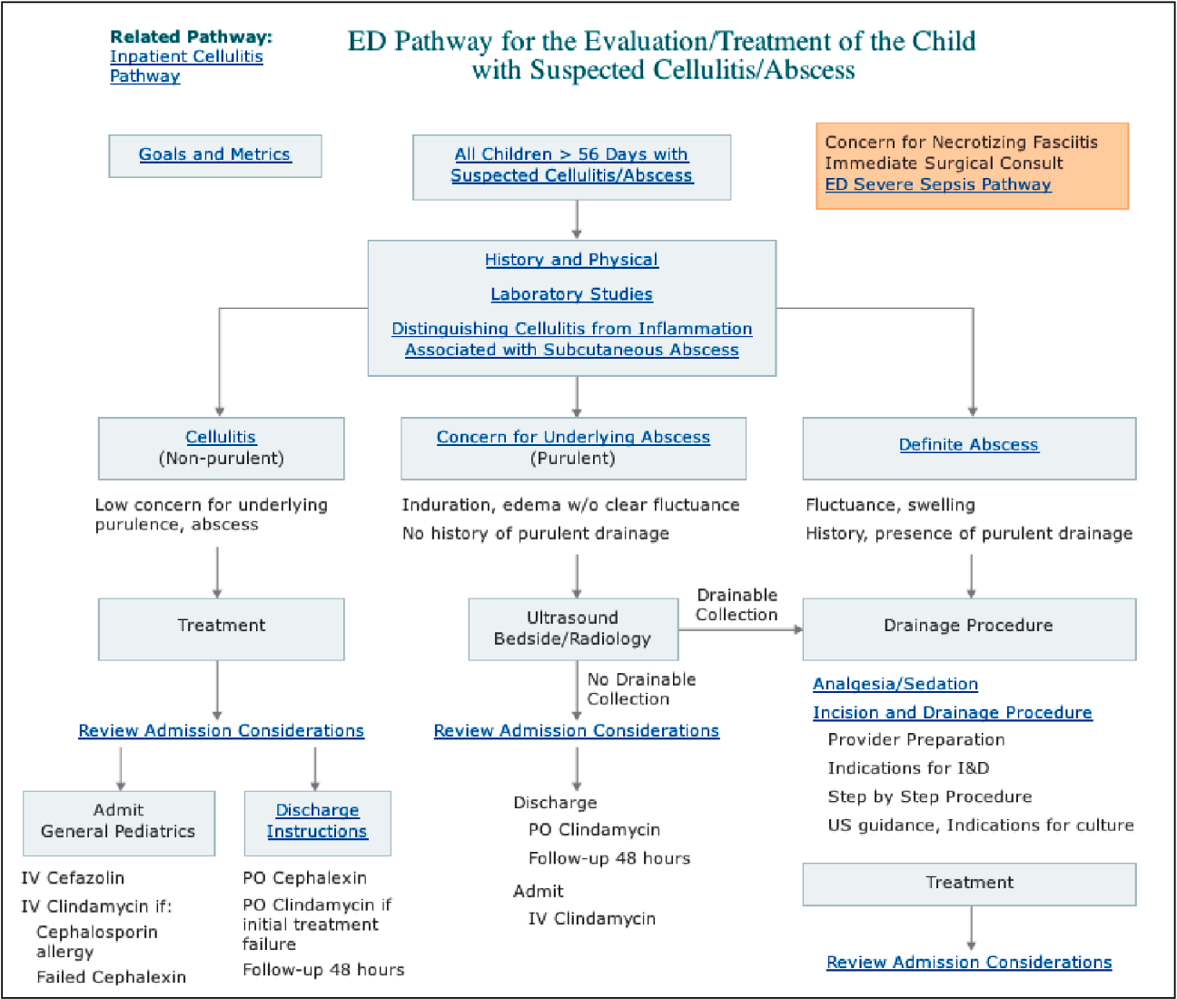 Figure 1 from Management of Skin and Soft-Tissue Infections