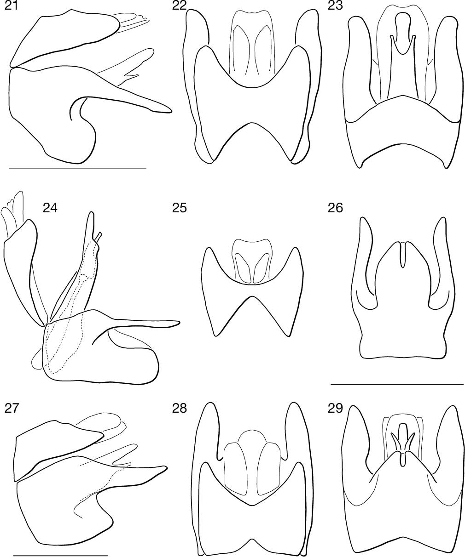 figure 21–29