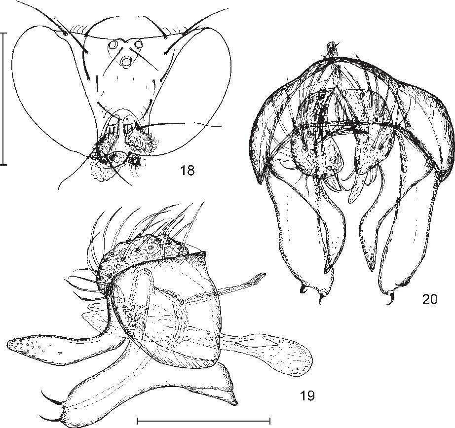 figure 18–20