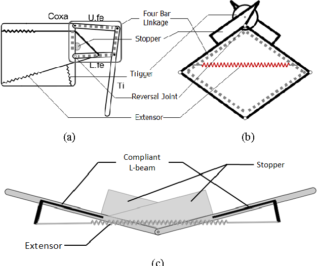 Figure 1 from A jumping robotic insect based on a torque ... on