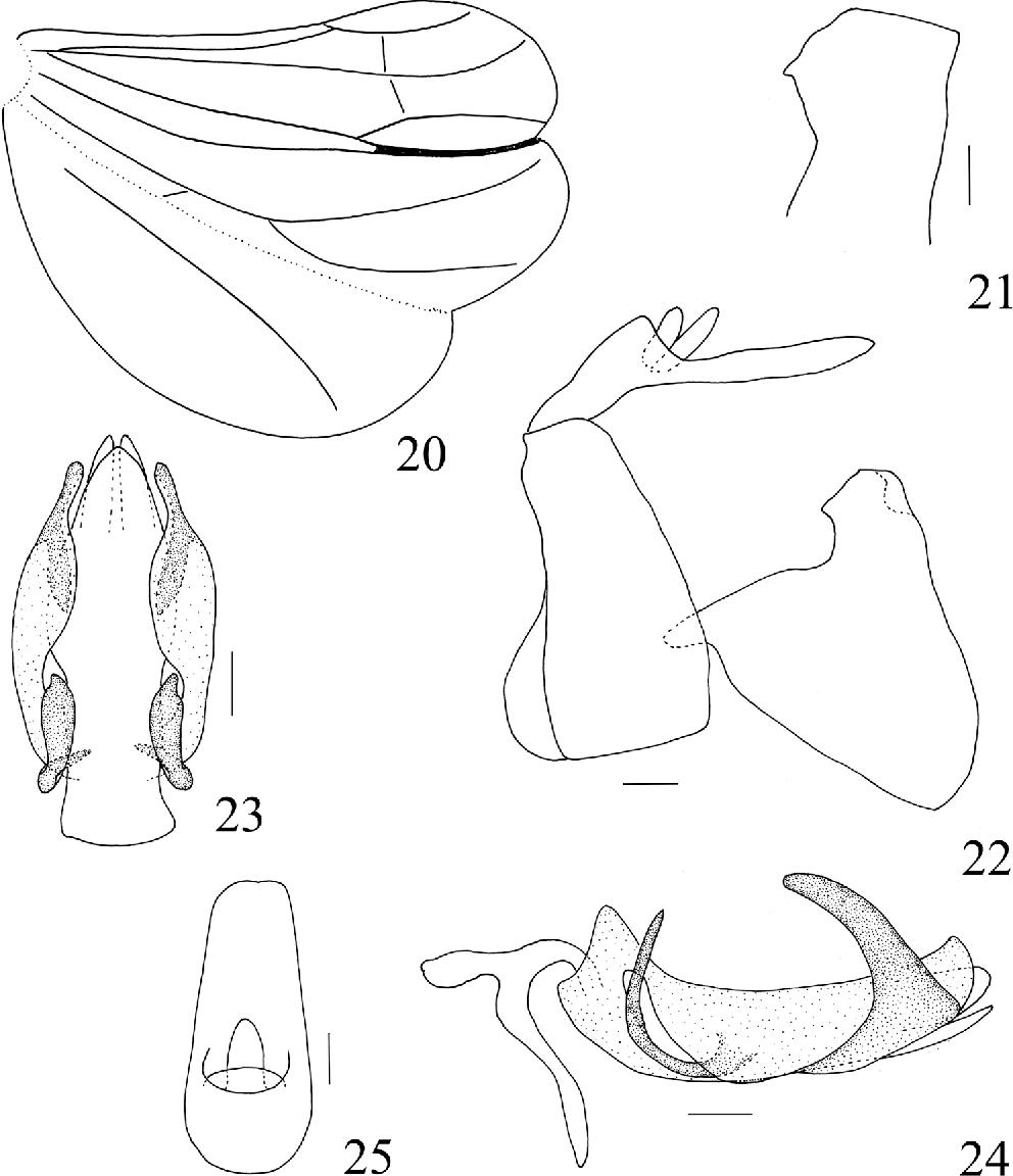 figure 20–25