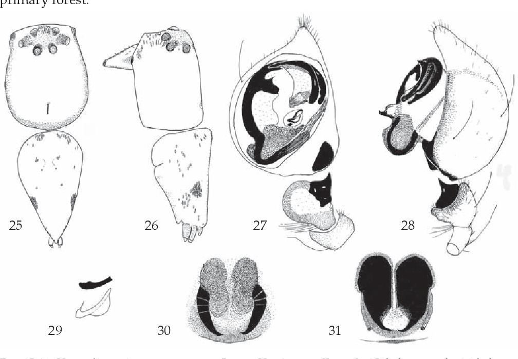 figure 25-31