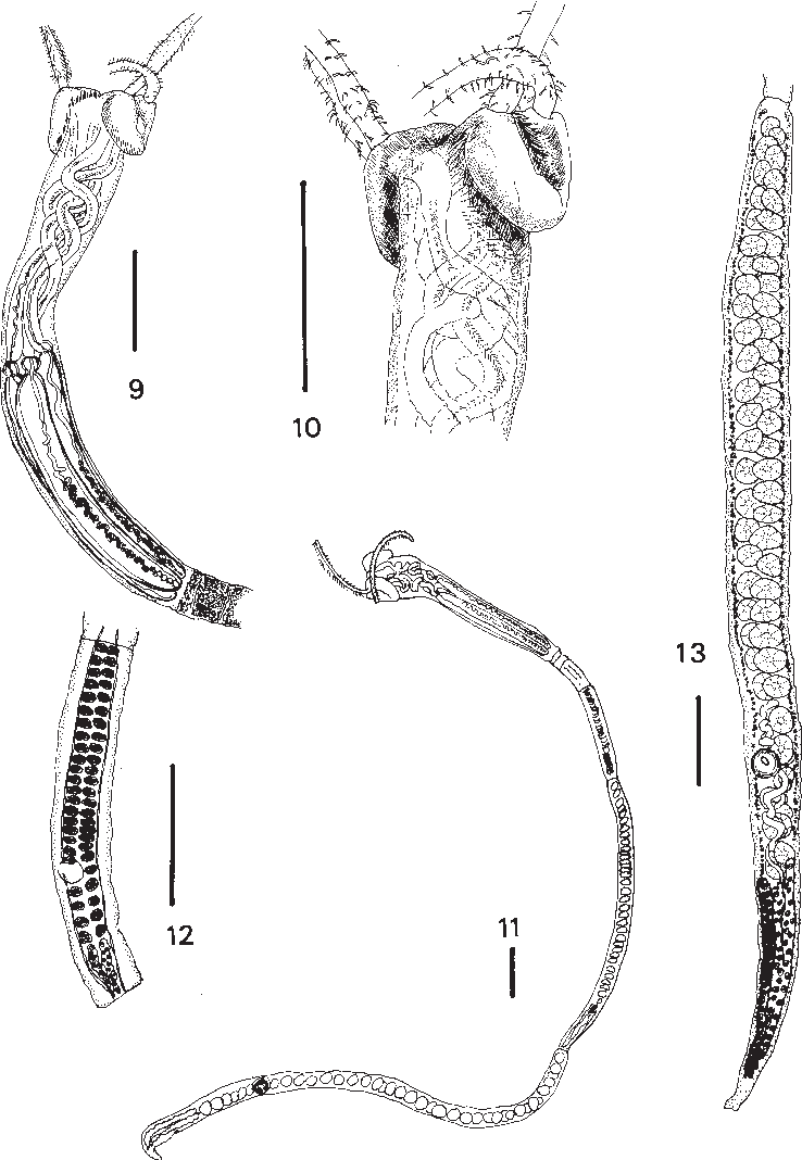 figure 9-13